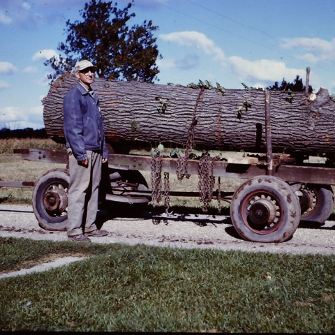 Walter Roadhouse with an oak log from his woodlot for lumber