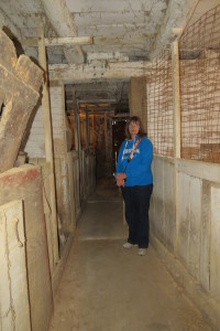Part of the big barn's centre aisle looking east, 2015 with Susan