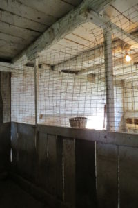 Inside the big barn- pigpens converted to chicken pen. 2015